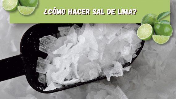 ¿Cómo hacer sal de lima?