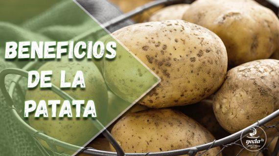 ¿Qué beneficios tiene la patata para tu salud?