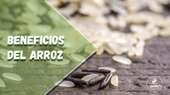 Beneficios de incluir arroz en la dieta