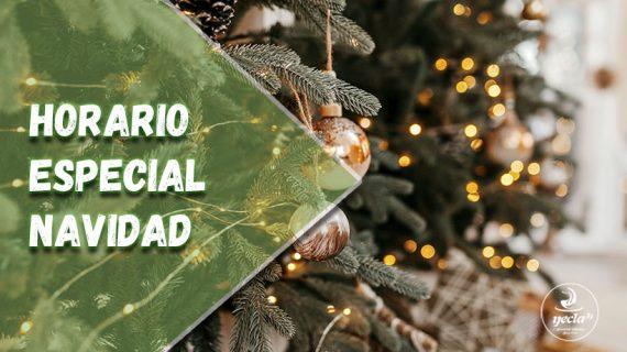 Horario especial Navidad