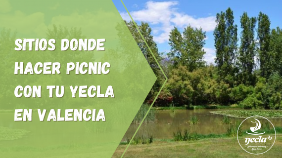 ¡Sitios donde hacer picnic con tu Yecla en Valencia!
